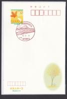 Japan Commemorative Postmark, Linear Motor Car Train Mt.Fuji (jch8041) - Japan