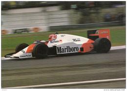 LAUDA        SUR    MC  LAREN    PORSCHE - Grand Prix / F1