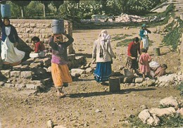 ISRAEL----KFAR KANA--the Water Well--l'eaufontaine--voir  2 Scans - Israel