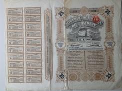 Action - Europe - Royaume-Uni - Minerva Roumania Oil Company -  London 1928 - 25 Actions - Pétrole