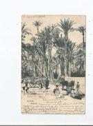 ELCHE 1034 PAISAJE 1902 - Autres