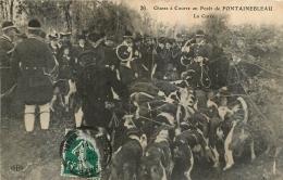 CHASSE A COURRE EN FORET DE FONTAINEBLEAU   LA CUREE - Hunting