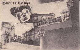 CPA  SANDRIGO (Italie).  Saluti Da Sandrigo, Multivues, Fleurs Pensée. ..C218 - Autres Villes
