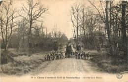 CHASSE A COURRE  EN FORET DE FONTAINEBLEAU ARRIVEE DE LA MEUTE - Hunting