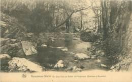 NONCEVEUX-SEDOZ - Un Sous Bois Au Vallon Du Ninglinspo (Environs D'Aywaille) - Aywaille