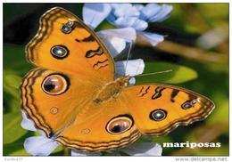 MARIPOSAS POSTAL 3 - Mariposas