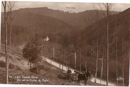 68 HAUT RHIN - LES TROIS EPIS Vus De La Route Du Tram (voir Descriptif) - Trois-Epis