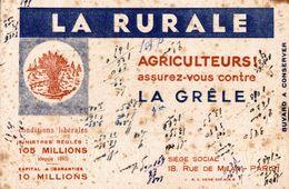 LA RURALE AGRICULTEURS ASSUREZ VOUS CONTRE LA GRELE - Agriculture