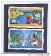 Cept 1999 Bulgarie Bulgaria Yvertn° 3814 A-B *** MNH Faune Et Flore Oiseaux - Ongebruikt