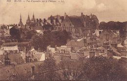 CPA - 41 - BLOIS - Vue D'ensemble Sur Le Château - 313 - Blois