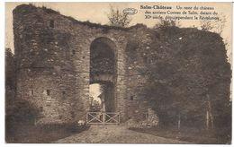 SALM CHATEAU (6690) Un Reste Du Chateau - Vielsalm