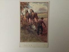 AK  RED CROSS ROTES KREUZ   OFFIZIELLE KARTE    1916. - Rotes Kreuz