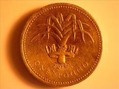 1990 One Pound - Pays De Galles -  Poireau - 1971-… : Monnaies Décimales