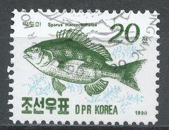 Korea, Democratic People's Republic 1990. Scott #2952 (U) Sea Bream, Sparus Macrocephalus, Fish, Poisson - Corée Du Nord