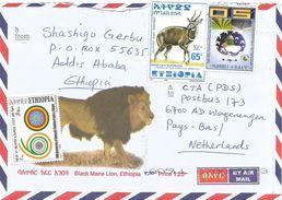 Ethiopia 2017 Addis Ababa Diplomatic Relations India African Union Bushbuck Cover - Ethiopië