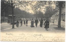 Bruxelles NA88: Avenue Louise ( Tramway ) 1905 - Transport Urbain En Surface