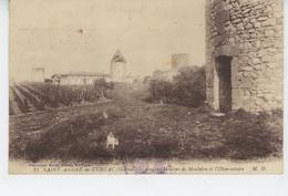 SAINT ANDRÉ DE CUBZAC - Anciens Moulins De Montalon Et L'Observatoire - Sonstige Gemeinden