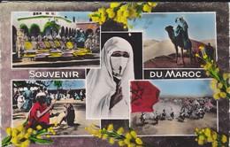 MAROC----SOUVENIR DU MAROC--multivues--voir  2 Scans - Maroc