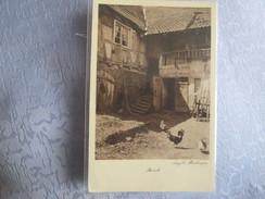 Boersch ;  Angela Bevilacqua - Autres Communes