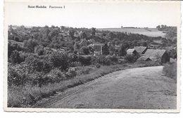 OLNE (4877) Saint Hadelin Panorama 1 - Olne