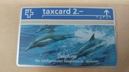 Switzerland-(k-93/27a)-delphine-die Intelligentesten Saugeti-(302l)(2chf)-tirage-5.000-mint Card+1card Prepiad Free - Suisse