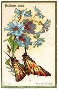 PAPILLONS - Papillons