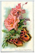 PAPILLONS(CHROMO) ROSE - Papillons