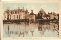 CHAMBELLAY -  Château Du Bois-Montbourcher      261 - France