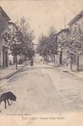 (18)   LAURIS - Avenue Joseph Garnier - Autres Communes