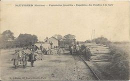 PLUVIGNER, Expédition Des Rondins à La Gare, RARE - Pluvigner