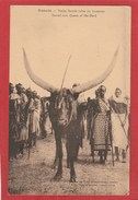 CPA: Rwanda - Vache Sacrée Reine Du Troupeau - Rwanda