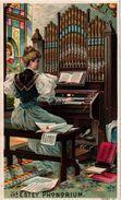 2 Trade Cards Chromos Fabrique Piano Pub. Estey Piano New York  Anno 1890  Litho - Sonstige