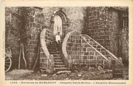 SAINT HERBOT       EGLISE    ESCALIER - Saint-Herbot