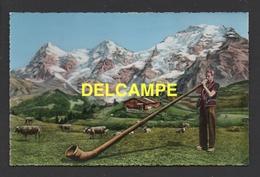DF / MUSIQUE ET MUSICIEN / INSTRUMENTS DE MUSIQUE / JOUEUR DE COR DES ALPES ( ALPENHORN ) EN SUISSE - Musica E Musicisti