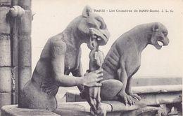 CPA - 75 - PARIS - Notre Dame Les Chimères - 21 - France