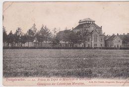 Hoogstraten. Prison Du Dépot De Mendicité De Merxplas. - Hoogstraten