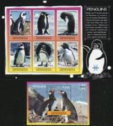MICRONESIA 2007 Penguins, Fauna MNH - Micronesia