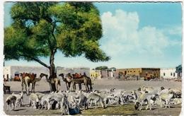 YEMEN - ADEN VIEW AT SHEIKH OTHMAN - 1963 - Vedi Retro - Formato Piccolo - Yemen