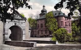 DEUTSCHLAND Allemagne - TROISDORF : Burg Wissem -  CPSM Dentelée Couleur PF 1962 - Germany - Troisdorf