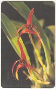 VENEZUELA(chip) - Orchid, 06/96, Used - Venezuela