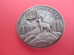 Insigne à épingle / Pyrénées/ Isard / Sapins Et Montagnes/Drago/ Années 50       MED164 - Medaillen & Ehrenzeichen