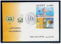 EGYPT / 2006 / World Environment Day - Desert And Desertification-White Desert / Birds / FDC - Egypt