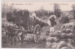 Middelkerke.  Au Village. La Rentrée Des Fourrages - Middelkerke