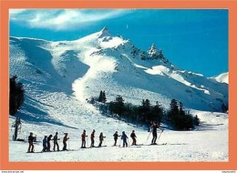 A116/161 63 - LE MONT DORE - Ecole De Ski Au Pied Des Pistes - Non Classés