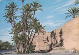 MAROC----MARRAKECH--le Long Des Remparts---voir  2 Scans - Marrakech