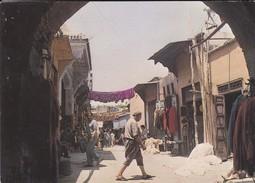 MAROC----MARRAKECH--teinturiers--voir  2 Scans - Marrakech