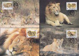 WWF India Indien Asiatic Lion Löwe 1999 CM MC MK Maxi Card Carte Maximum Maxicards Maximumkarten - Maximum Cards