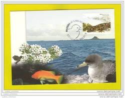..... MAXIMUM CARD PORTUGAL MADEIRA ILHAS SELVAGENS FISH BIRD - REPTILES REPTILE - Reptiles & Batraciens