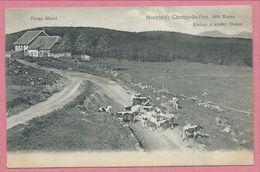 67 - BELMONT -  HOCHFELD - CHAMP Du FEU - Ferme Morel - Vaches  - Kleiner Und Grosser Donon - Francia
