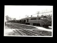 TRAINS - ARGENTINE - Locomotive ELECTRIC 1524 - Trains